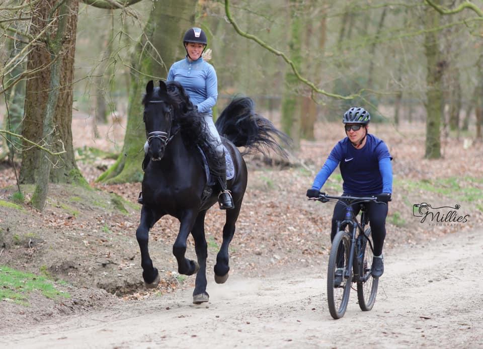 Mountainbike en paardrijden